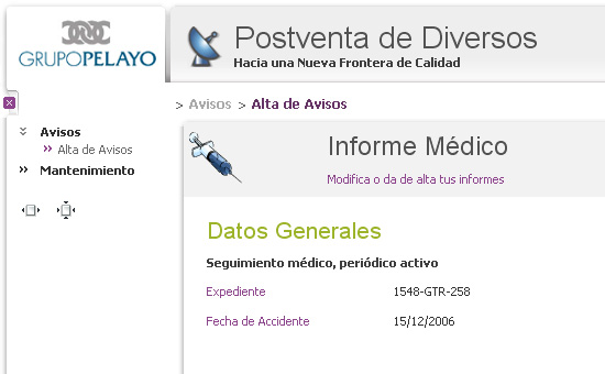 web_pelayo6